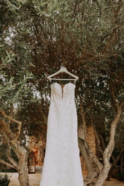 The wedding dress hanging on a olive tree.