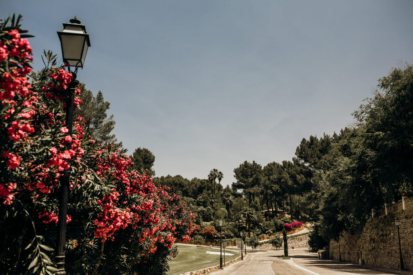 Way to the wedding venue Hotel Castillo Son Vida in Majorca.